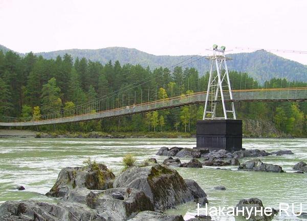 Алтай, река, Катунь, природа, горы, лес, мост(2014)|Фото: Накануне.RU