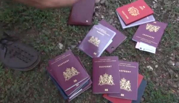 Паспорта, малазийский боинг, крушение, ДНР|Фото: