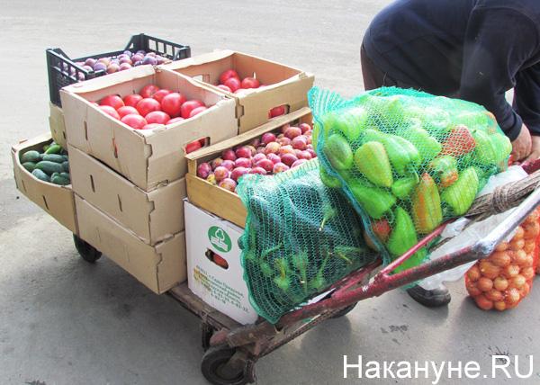 Овощебаза №4, овощи, фрукты|Фото: Накануне.RU
