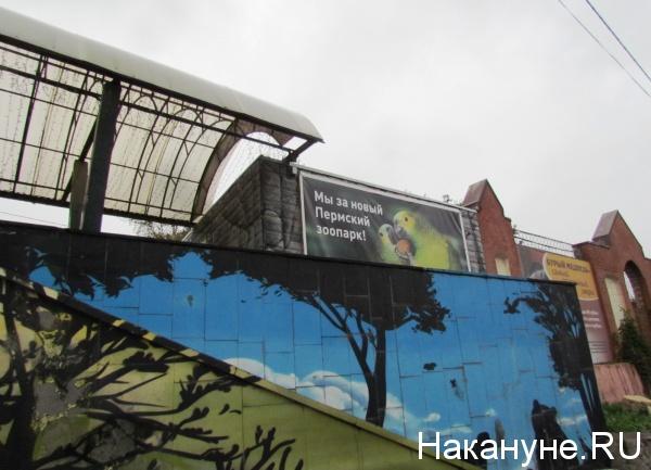 зоопарк, Пермь|Фото: https://www.nakanune.ru/