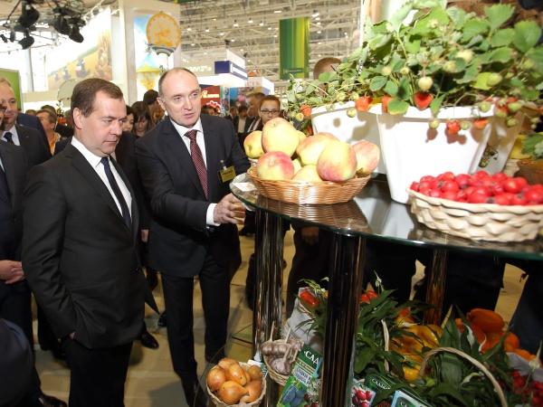 Медведев Дубровский Золотая осень - 2014|Фото:пресс-служба губернатора Челябинской области