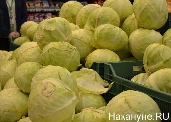 продукты, магазины, цены, капуста|Фото: Накануне.RU