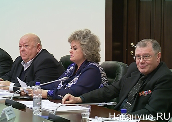 Татьяна Николаева, Совет по культуре при полпреде УрФО|Фото: Накануне.RU