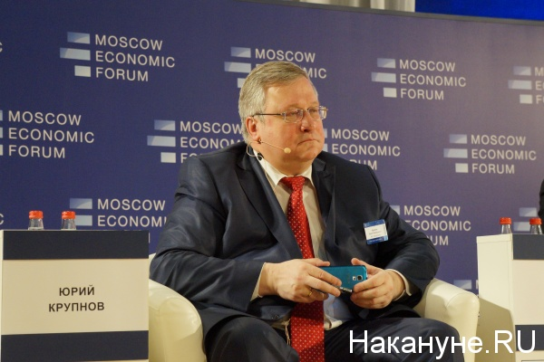 мэф, московский экономический форум, крупнов|Фото: Накануне.RU