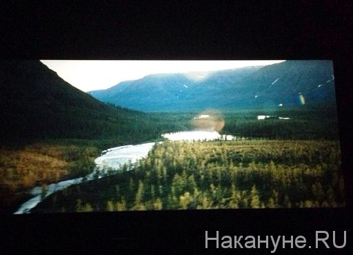 Территория, фильм, Александр Мельник|Фото: Накануне.RU