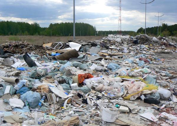 стихийная свалка вблизи микрорайона Ямальский|Фото: пресс-служба прокуратуры Тюменской области