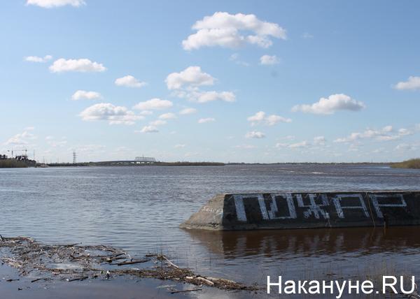 загрязнения рек в Югре|Фото: Накануне.RU