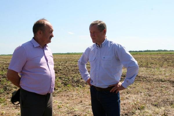 Алексей Кокорин поле посевная|Фото: пресс-служба губернатора Курганской области