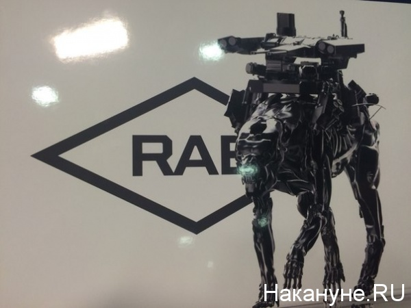 RAE-2015, выставка вооружения|Фото:Накануне.RU
