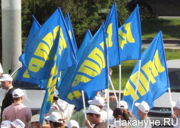 ЛДПР, флаги, митинг|Фото: Накануне.RU