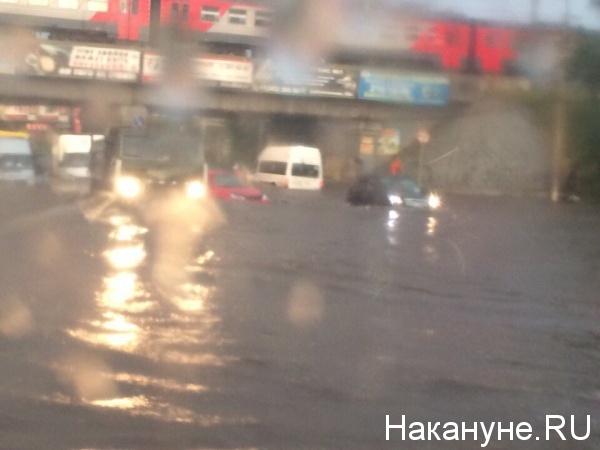 дождь, непогода, потоп, ливень(2015) Фото: Фото: Накануне.RU
