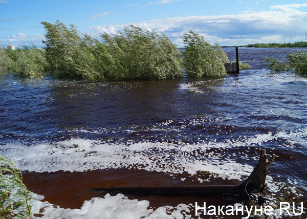 потоп в Юганске|Фото: Накануне.RU
