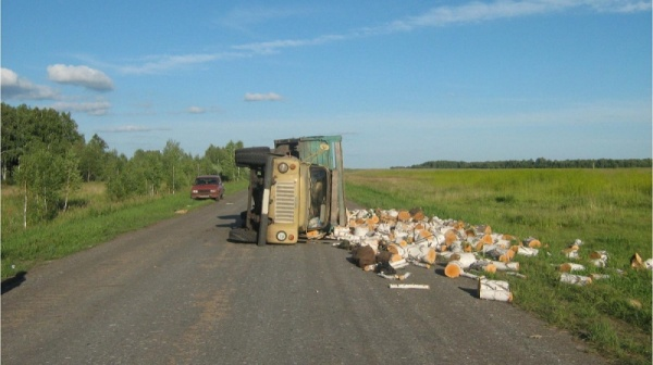 грузовик Зауралье дрова ДТП Петухово|Фото: ГИБДД Курганской области