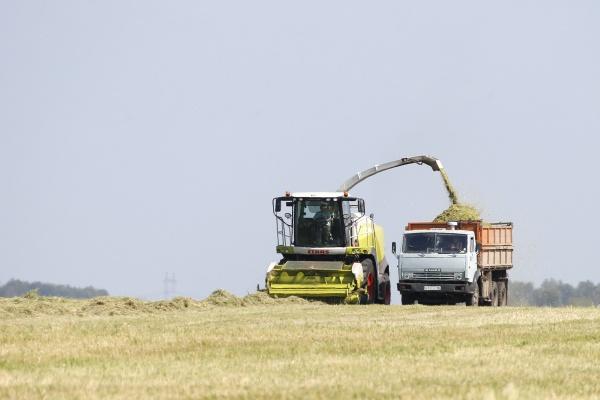 комбайн, аграрии, АПК|Фото: Департамент информационной политики губернатора
