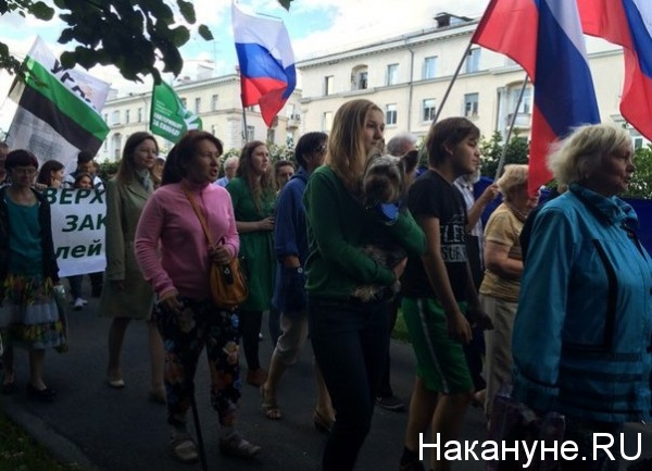 Зеленый марш|Фото: Накануне.RU