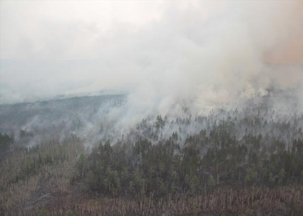 Байкал, пожар, огонь|Фото: