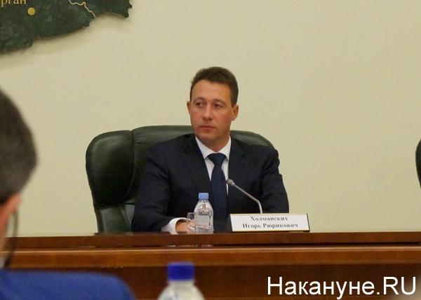 совет при полпредстве, Игорь Холманских|Фото: Накануне.RU