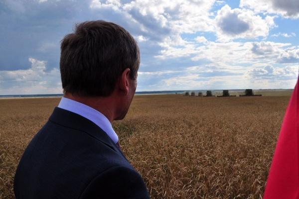 Алексей Кокорин поле пшеница Зауралье|Фото: пресс-служба губернатора Курганской области