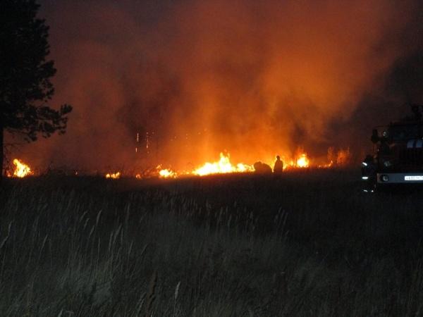 лесной пожар тушение|Фото: ГУ МЧС РФ по Челябинской области