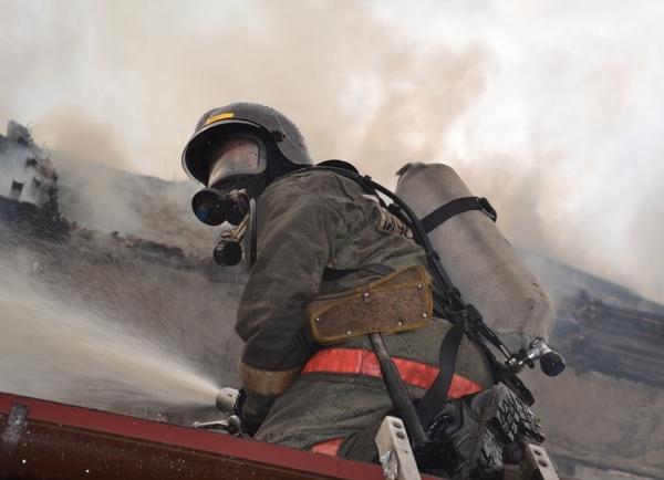 пожар в таунхаусе в Челябинске, Пустового, возгорание, пожарный|Фото: ГУ МЧС по Челябинской области
