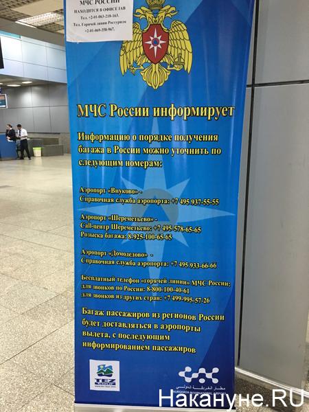 МЧС, аэропорт Фото: Накануне.RU