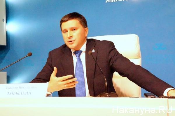 Дмитрий Кобылкин|Фото: Накануне.RU
