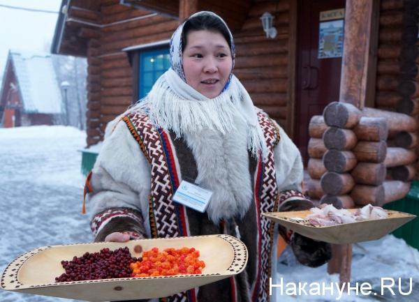 КМНС, морошка, клюква, коренные народы, ненцы, Горнокнязевск|Фото: