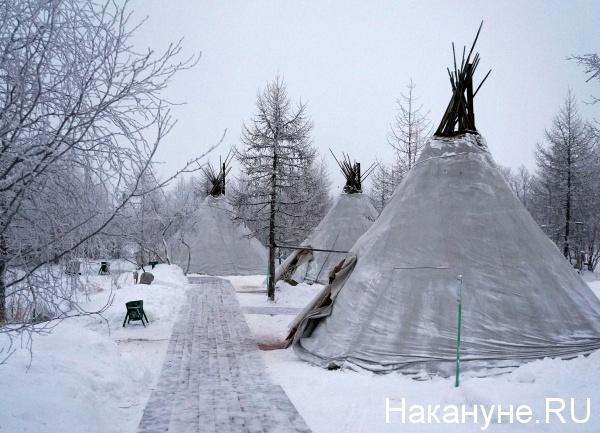 чум, КМНС, коренные народы|Фото: