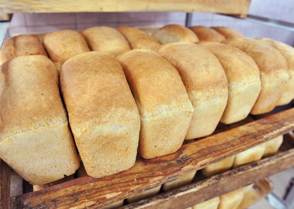 Аромашевские просторы хлеб|Фото: gubernator.admtyumen.ru