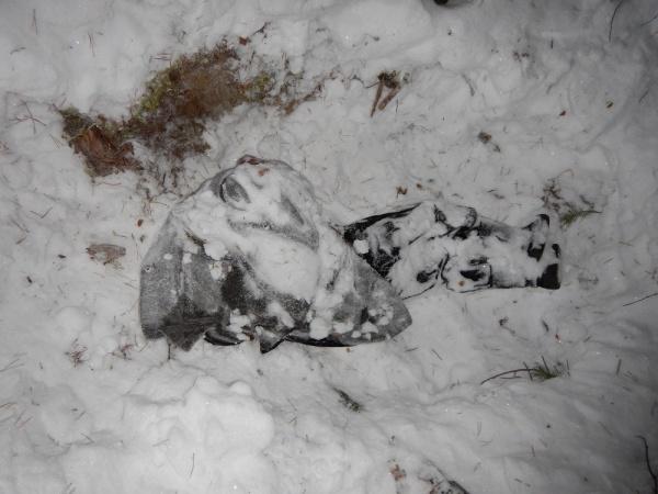 убийства Нейво-Шайтанский Средний Урал|Фото: СК РФ по Свердловской области