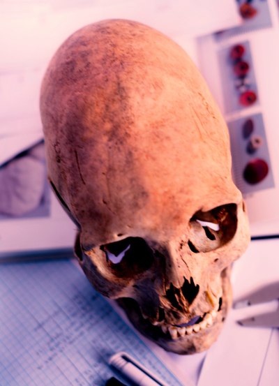 останки древних сарматов|Фото: историко-археологический центр Аркаим