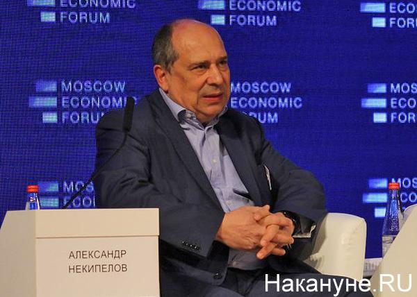 мэф московский экономический форум александр некипелов|Фото: Накануне.RU
