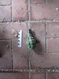 граната Ф-1|Фото: ГУ МВД РФ по Свердловской области