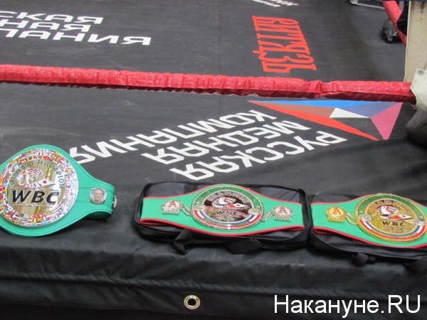 чемпионские пояса бокс|Фото: Накануне.RU