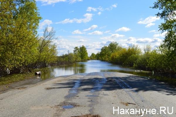 Участок дороги между мостом по улице Бурова-Петрова и шоссе Тюнина Курган|Фото:Накануне.RU