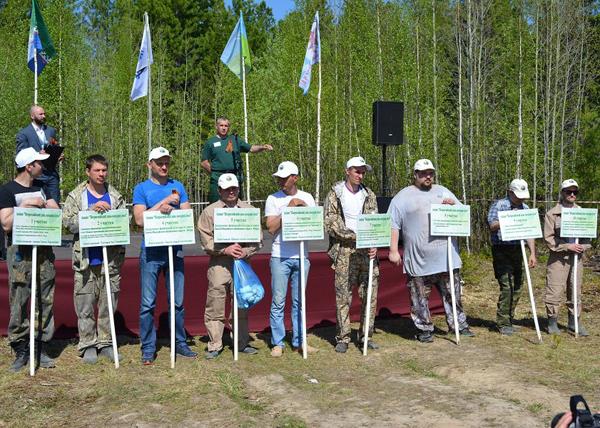 лес победы, спасти и сохранить|Фото: admhmao.ru