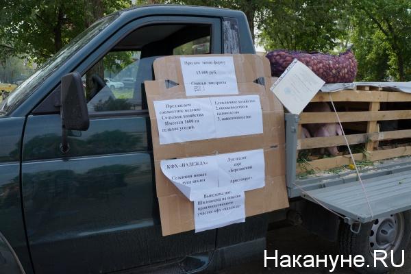 АПК, аграрии, сельское хозяйство|Фото: