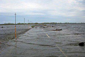 Паводок в Тобольском районе Фото: Пресс-служба администрации Тобольского района