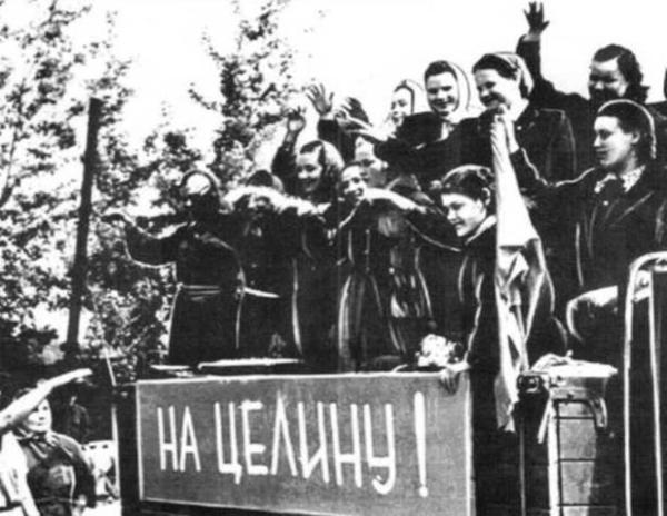 освоение целины при Хрущеве|Фото: