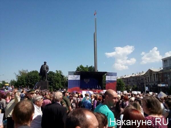 митинг против миссии ОБСЕ, Донецк|Фото: Накануне.RU