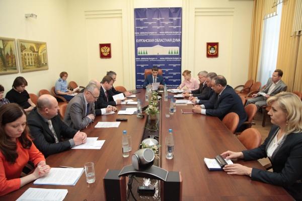 заседание, Курганская областная Дума, комитеты Фото:пресс-служба Курганской областной Думы