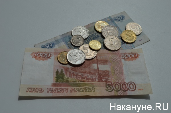 деньги, зарплата|Фото:Накануне.RU